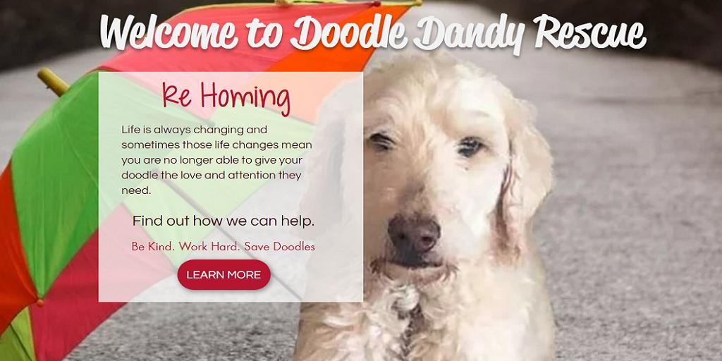 Doodle Dandy Rescue